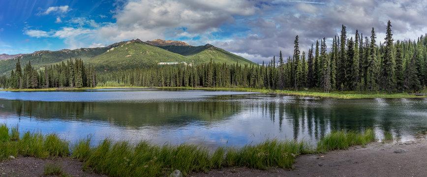 Horseshoe Lake Trail in Denali Park