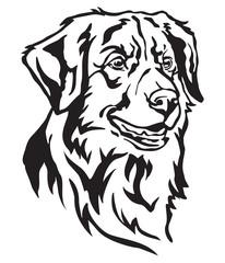 Decorative portrait of Dog Toller vector illustration