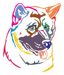 Colorful decorative portrait of Dog American akita vector illustration