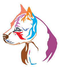 Colorful decorative portrait of Dog American Staffordshire Terrier 2 vector illustration