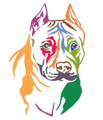 Colorful decorative portrait of Dog American Staffordshire Terrier vector illustration