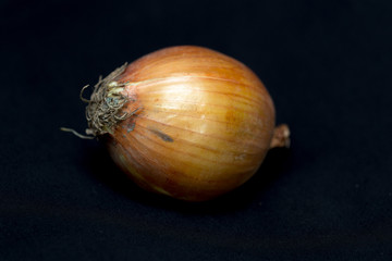 Onion on a black background