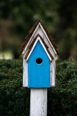 Blue bird house on a rainy day