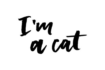 slogan CAt phrase graphic vector Print Fashion lettering calligraphy