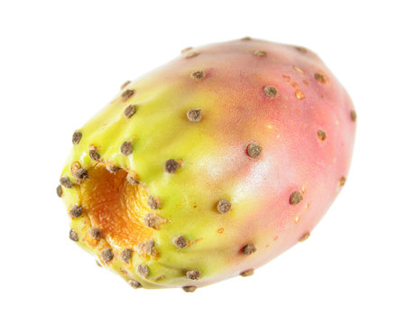 Prickly pear fruit isolated on white background