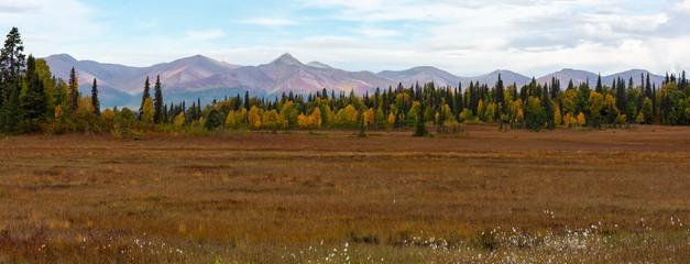 Alaskan pasture in fall