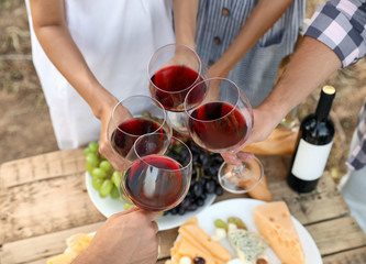 Friends holding glasses of wine over picnic table at vineyard Fototapete