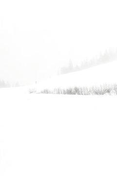 Bleak_Weather