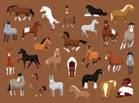 Various Horse Poses Cartoon Vector Illustration