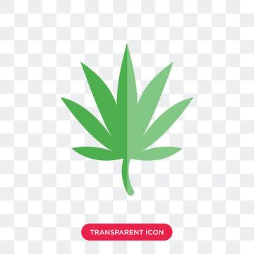 Marijuana vector icon isolated on transparent background, Marijuana logo design