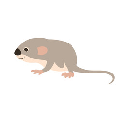 small mouse    vector illustration flat style  profile