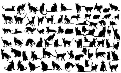 silhouette of a cat, set Wall mural