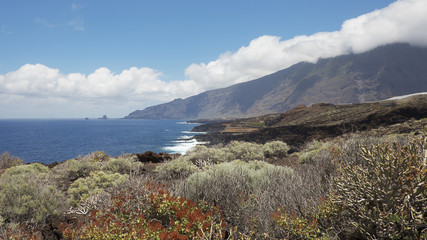 Coastal views towards the northern part of the island, with focus on the endemic flora, on the walking route to Charco Azul, El Hierro, Canary Islands, Spain