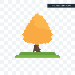 Sugar Maple tree vector icon isolated on transparent background, Sugar Maple tree logo design