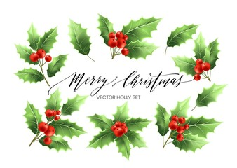Christmas holly branches realistic illustrations set
