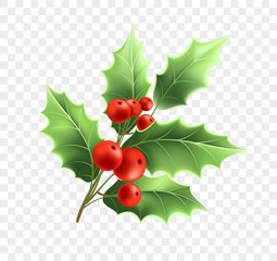Christmas holly twig realistic illustration
