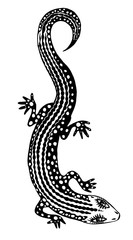 Silhouette of a detailed exotic wild lizard.