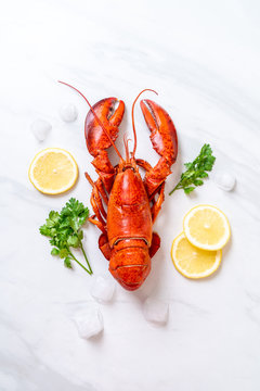 red lobster with ice and lemon