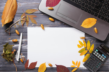 Office table with computer and autumn leaves.