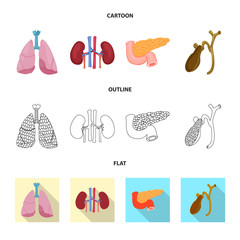 Vector illustration of body and human icon. Set of body and medical vector icon for stock.