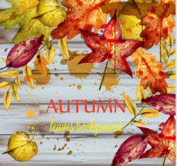 Autumn leaves watercolor Vector. Wooden decor background. Fall banner template. Golden red color