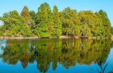 Herbstwald spiegelt sich im Wasser