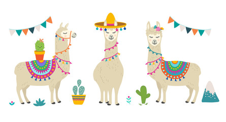 Foto op Canvas Bestsellers Kids Cute cartoon llama alpaca vector graphic design set. Hand drawn llama character illustration and cactus elements for nursery design, poster, greeting, birthday card, baby shower design and party decor