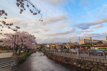 Cityscape with cherry blossom and mount Fuji in sprint season at Fujinomiya, Shizuoka prefecture, Japan