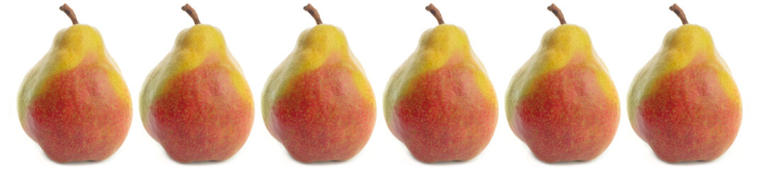 Wall Mural - panorama pattern yellow ripe pear on white background