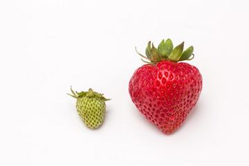 Fresas, verde y roja