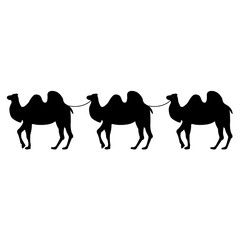 Camel icon, silhouette, logo on white background