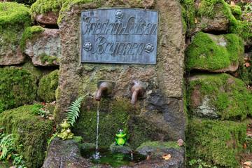 Friedrich-Luisen Brunnen auf dem Wanderweg Murgleiter, Schwarzwald, Deutschland