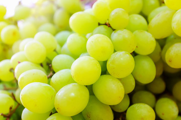 Many berries of white grapes. Juicy white grapes background