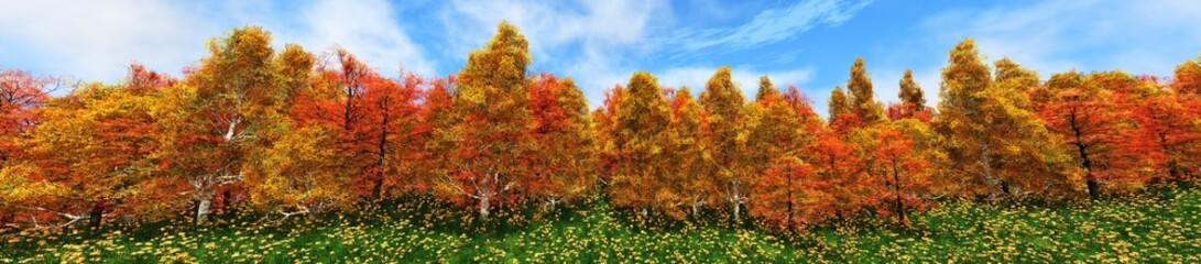 Edge of the autumn forest. Panorama of autumn trees.