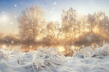 Amazing winter scene on bright morning sunrise with vibrant sunrays through frosty and snowy trees. Winter snowfall. Natural landscape of cold christmas morning. Xmas background.