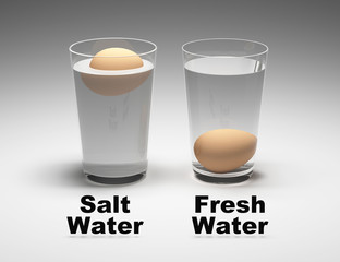 Buoncy experiment. Egg testing in pure and salt water. Density and buoyant force. 3D Render.