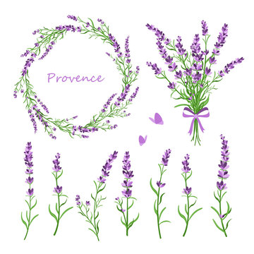 Vector illustration set of lavender flowers, bouquet, wreath and elements of design for greeting card on white background in retro flat style, provence concept.