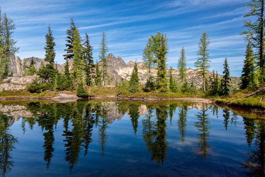 Trees reflecting in a pond near Blue Lake, Winthrop, WA