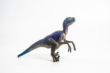 dinosaur , Velociraptor on white background