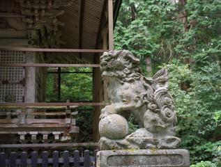 苔が美しい福井県勝山市の平泉寺