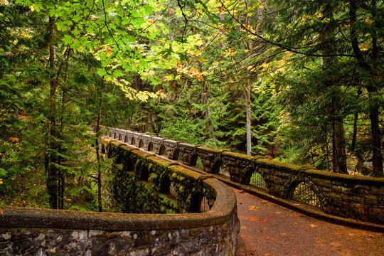 Mossy stone bridge trail through lush forest