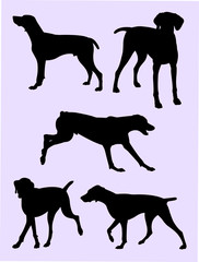 Pointer dog silhouette 01. Good use for symbol, logo, web icon, mascot, sign, or any design you want.