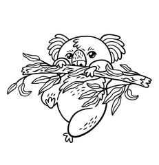 Hand drawing vector koala in cartoon style. Animal contour sketch