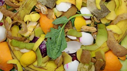 Küchenabfälle für die Biotonne zur Kompostierung