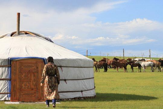 Mongolian yurt, horses and woman