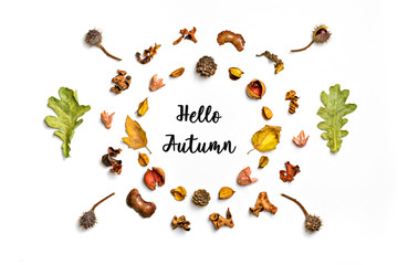 Creative pattern arrangement. Autumn composition made of dried leaves, berries and flower on white background. Flat lay, top view, copy space, empty text,mock up Inscription Autumn sale