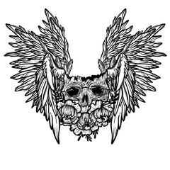 Vector print with a human skull,wings and flowers. Gothic brutal skull. Angel. For print t-shirts or book coloring.