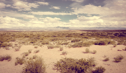 Desert landscape in Bolivia