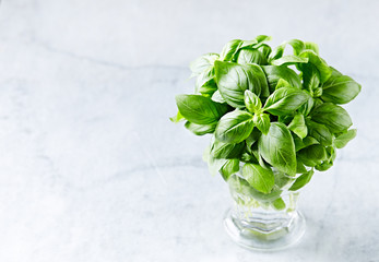 Fresh basil leaves in a glass. Fresh herbs. Natural food ingredients. Stone background.