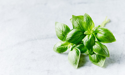 Fresh basil leaves on marble background. Close-up. Copy space